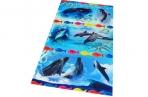 Наклейки Дельфины А6 оптом