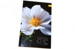 "Ежедневник недат., A5, 136л. 7БЦ ""Цветы. Grand chic"", OfficeSpace оптом"