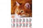 2021 Календарь А2 Кошки. Рыжий котик оптом