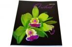 Тетрадь 48л. BRAUBERG кл., обл. мел. карт., Орхидеи (4 вида) оптом