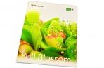 Тетрадь 48л. BRAUBERG кл., обл. мел. карт., Full Blossom (Цветы)  (5 видов) оптом