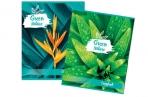 Тетрадь А5 48л. BRAUBERG клетка, обложка картон, GREEN NATURE, 403033 оптом