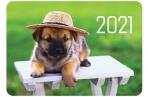 "2021 Календарь карманный 70*100 2021 ""Щенки"" HATBER оптом"