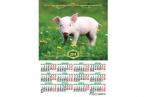 2019 Календарь-плакат А2 420*594 мм Символ года оптом