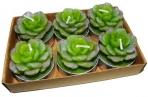 набор 6 свечей-картриджей КРАССУЛА 3. 5см зеленый оптом